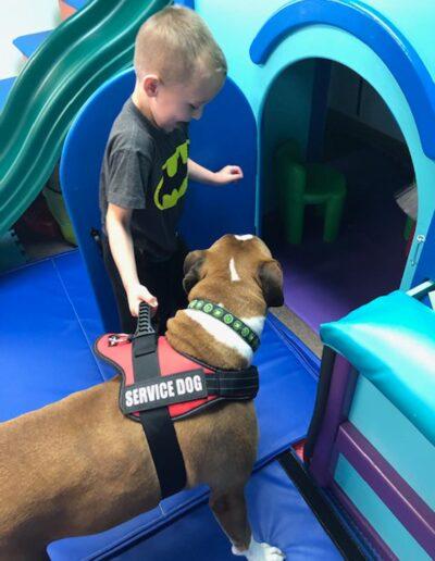 Pediatric Therapy Service Dog